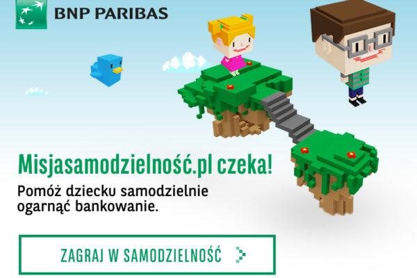 BNP-misja-sam-800x600